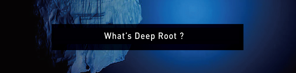 What's DeepRoot?